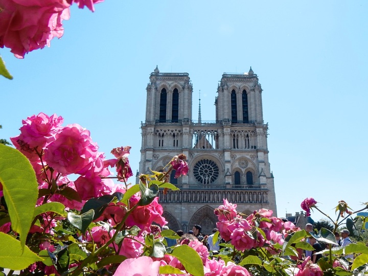 Paris-Notre-Dame-Photography