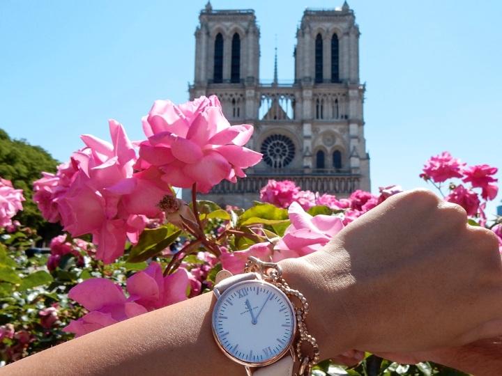 Paris-Notre-Dame-Kaptenandson