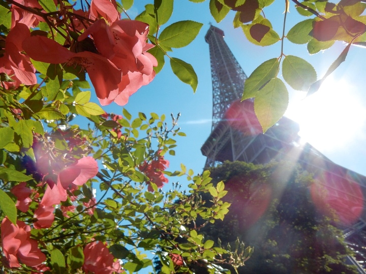 Romantic-Paris-Eiffel-Tower