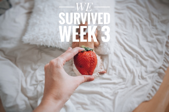WE SURVIVED WEEK 3 – dummy, crib & bye bye belly button