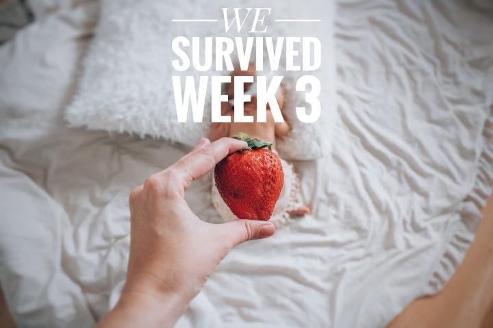 WE SURVIVED WEEK 3 – dummy, crib & bye bye bellybutton